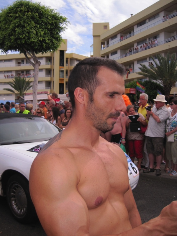 Gay Bb 11